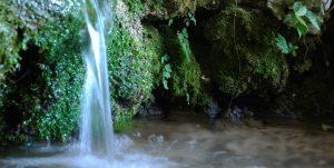Fuente de la cueva del agua