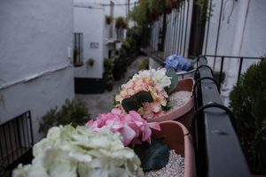 Casas rurales en un entorno unico y privilegiado de Quesada
