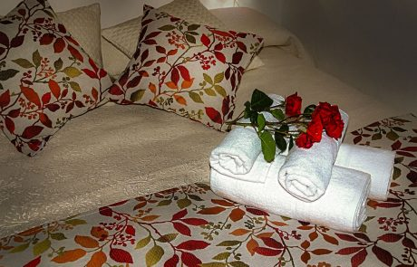 Roses Romantic Bundle Cazorla Rural House